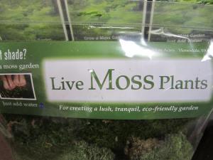 Moss 002