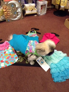 ChingShih modelling one of the new outfits $13.99-$14.99